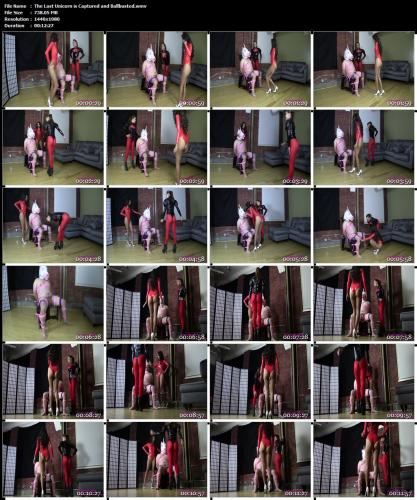 the-last-unicorn-is-captured-and-ballbusted-wmv.jpg